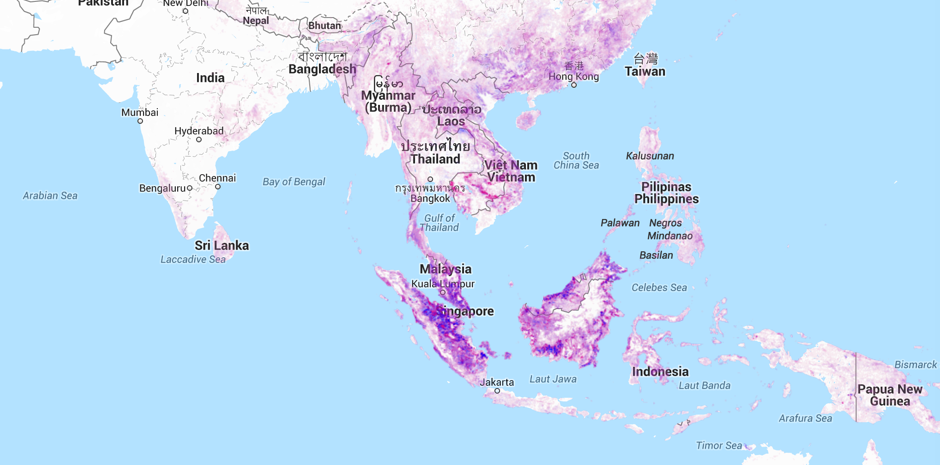 Global Forest Watch: Monitor Deforestation in Real Time