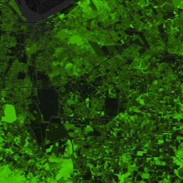 Louisville Tree Canopy Map